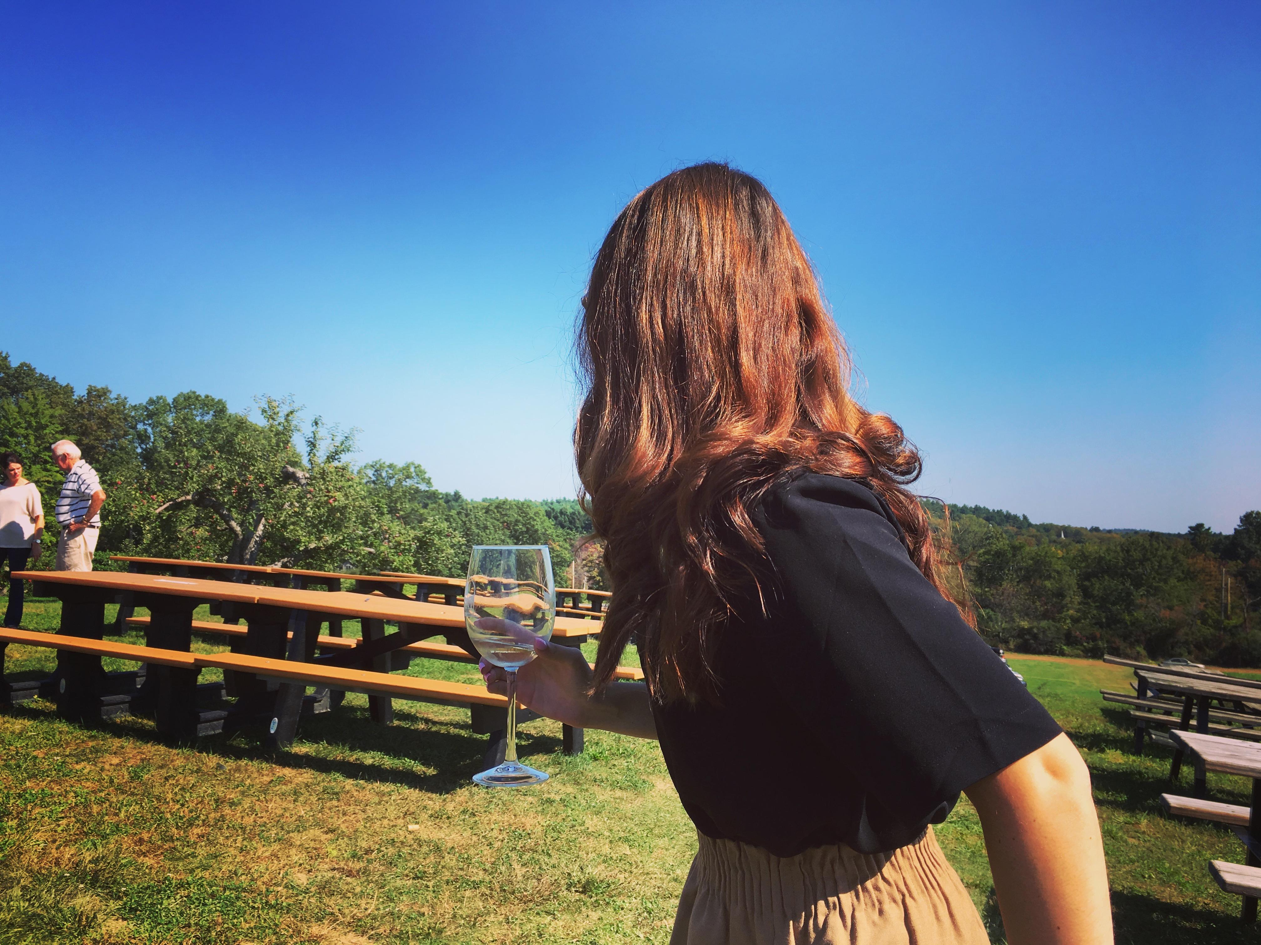 Fall Trips Nashoba Valley Winery Tea With Tina